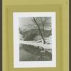 "Central Park - Pond in winter, swans and ducks by bridge. Photographer's note - ""1932 Christmas Card""."