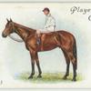 """""""Aboyeur"""" Derby, 1913."""