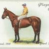"""Poethlyn"" War National, 1918. Grand National 1919."