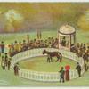 [Horse in circular enclosure.]
