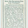 Do you know how the Sargasso Sea was formed?