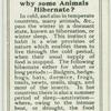 Do you know why some animals hibernate?