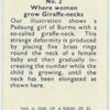Do you know where women grow giraffe-necks?