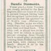 Dandie Dinmonts.