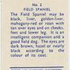 Field Spaniel.