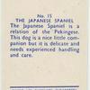 The Japanese Spaniel.