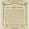 King Charles Spaniel.