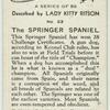 The springer spaniel.