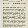 The Old English sheepdog.