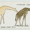 The giraffe.