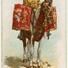 Drum horse, 1st Life Guards.
