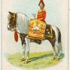 Drum horse of the 6th, Inniskilling Dragoons.