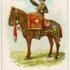 Drum horse of the 8th King's Royal Irish Hussars.
