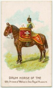 Drum horse of the 10th, Prince of Wales's Own Hussars.