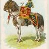 Drum horse of the 11th, Prince Albert's Own Hussars.