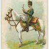 Drum horse of the 3rd, King's Own Hussars.