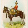 Drum horse of the 7th, Princess Royal's Dragoon Guards.