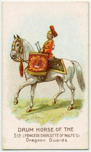 Drum horse of the 5th, Princess Charlotte of Wales's Dragoon Guards.