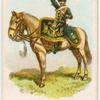 Drum horse of the 14th, King's Hussars.