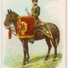 Drum horse of the 15th King's Hussars.