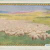 Sheep farming.