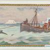 Whale fishing.