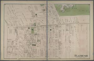 Flatbush. Town of Flatabush, Kings Co. L.I. - Prospect Park.