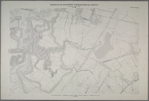 Sheet No. 28. [Includes Bloomfield, (Staten Island Wet Lands Preserve), (Bulls Head) and South Avenue.]