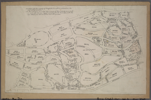 [Miniature map of the property of Delafields Estate. Bounded by Riverdale Avenue, Mosholu Avenue, W. 53rd Street, Broadway, W. 238th Street, Spuyten Duyvil, W. 236th Street and Fieldston Road.]