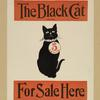 The black cat.