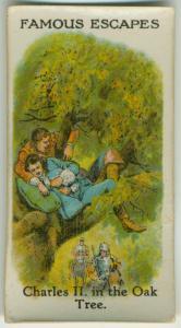 Charles II in the oak tree.