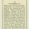 """Myrobella""."