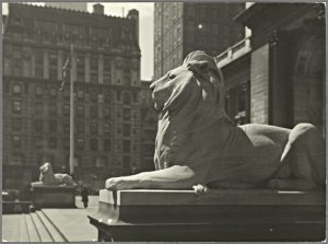 Statues - New York Public Library - Lions