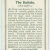 The Buffalo.