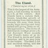 The Eland.