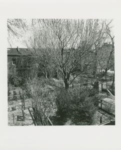 Beverly & John Warmath. Gardens of Pratt Row. 175 Steuben St., Clinton Hill, Brooklyn. April 16, 1978.