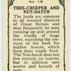 Tree-creeper and Nut-hatch.