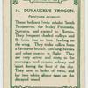 Duvaugel's Trogon.