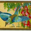 Lort Phillips Roller.