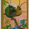 Hunstein's Bird-of-Paradise.