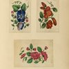Three drawings of flowers.]