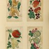 Four drawings of vegetables and fruit.]