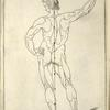 Lamª 2 figª 2. [Diagram of proportions of man, back.]