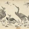 Design of birds catching insects
