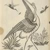 Design of crane, smaller birds catching insects