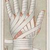 Continuous finger bandage.