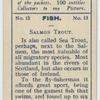 Salmon Trout.