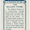 The miller's thumb.