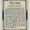 The chub (Leuciscus cephalus).