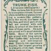 Trunk-fish (Avacana lenticularis).